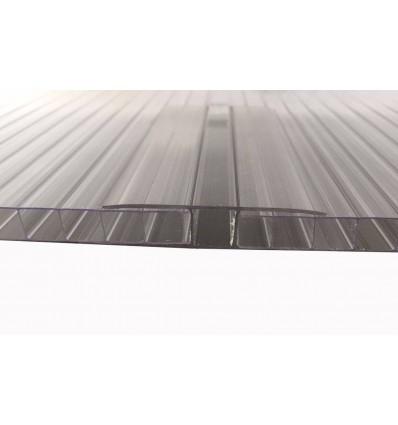 10mm lavpris termotag 2-lags klar 98x390cm polycabonat